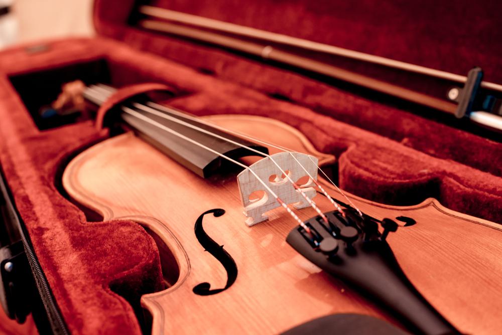 close up of violin in case