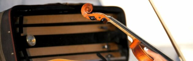 The 10 Best Violin Cases 2021