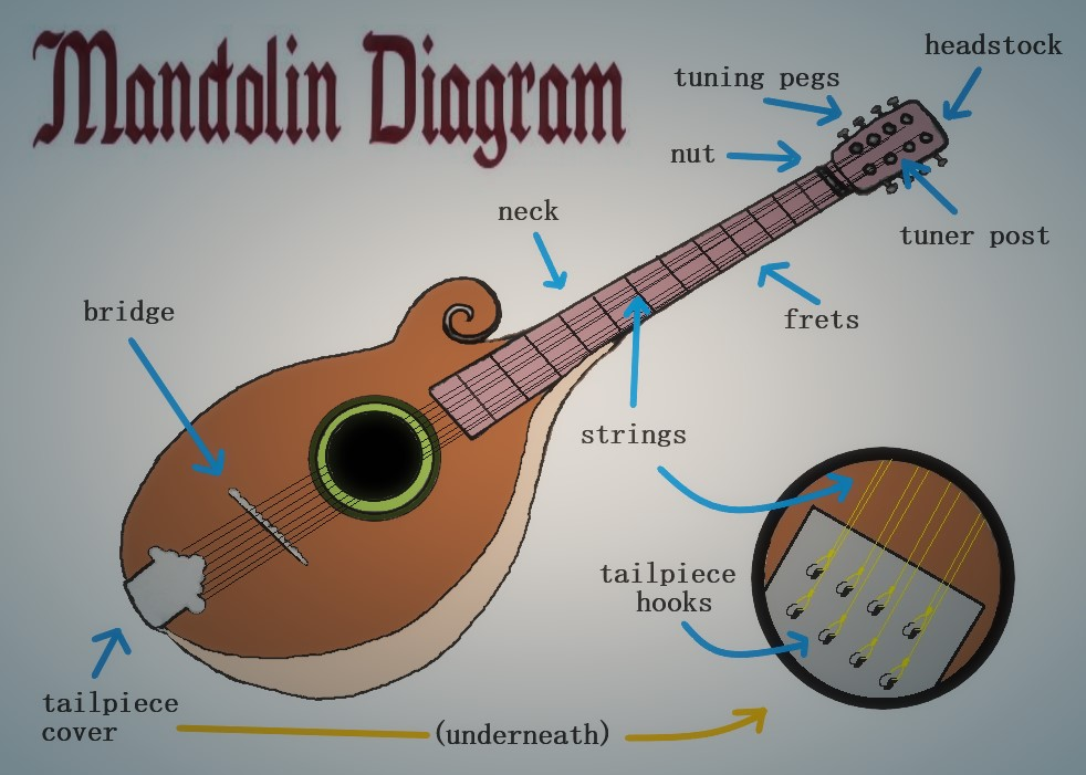 Mandolin Diagram